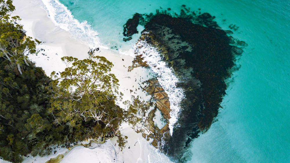 Bruny Island's stunning white sand beaches.