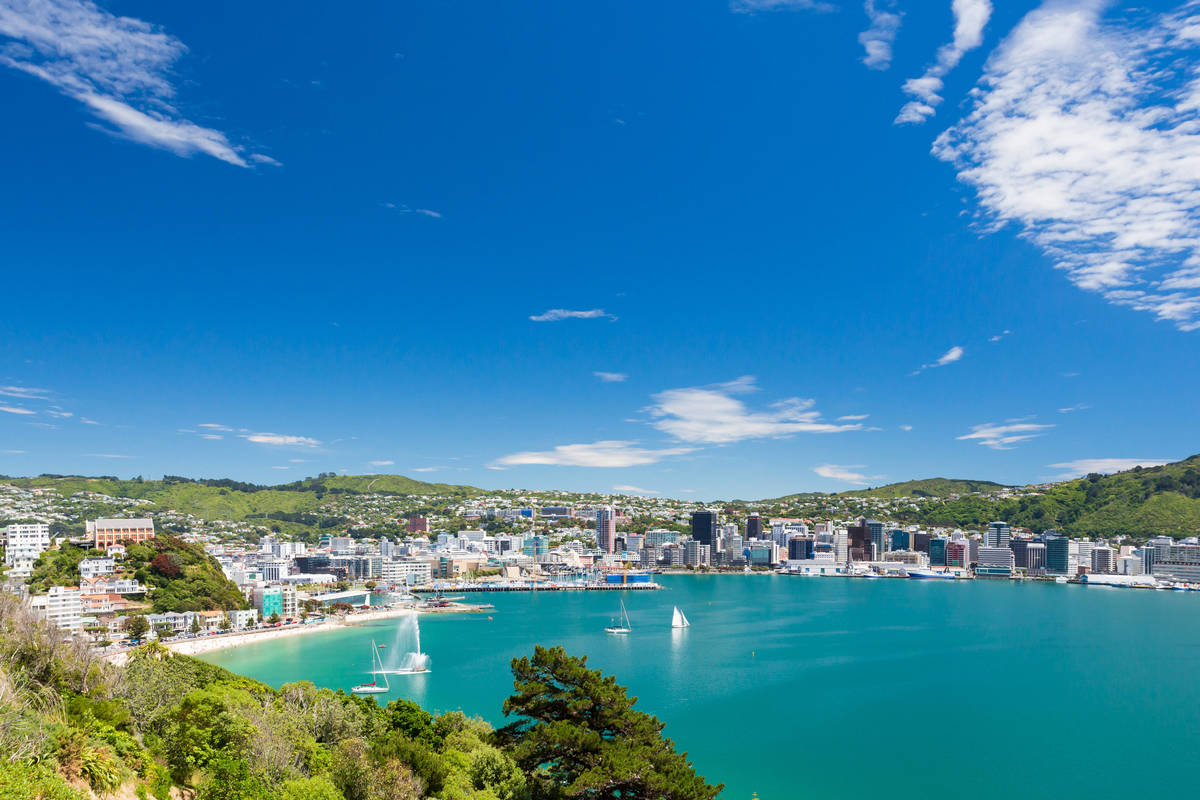 View from Mount Victoria into the bay of Wellington.