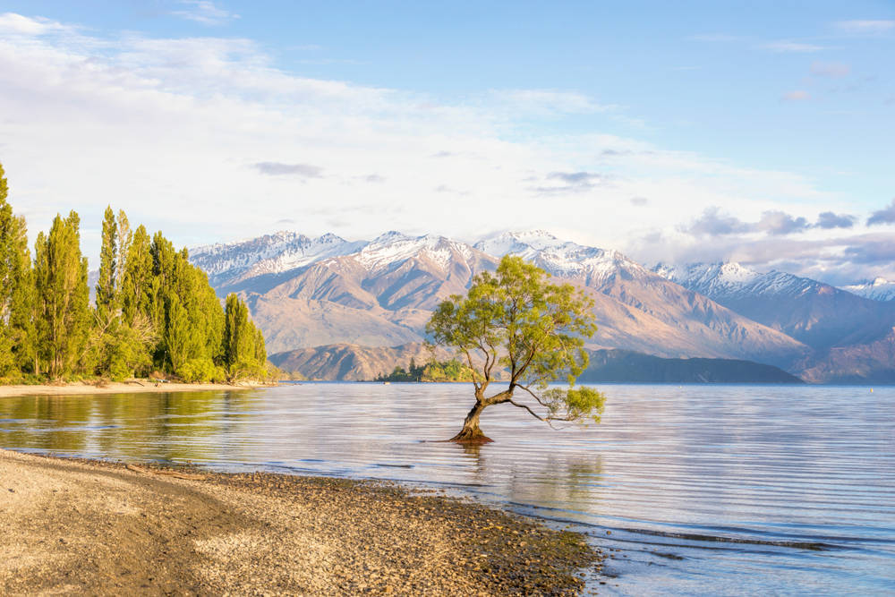 Wanaka New Zealand.